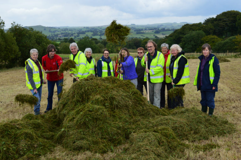 Volunteers on Warslow hay meadows