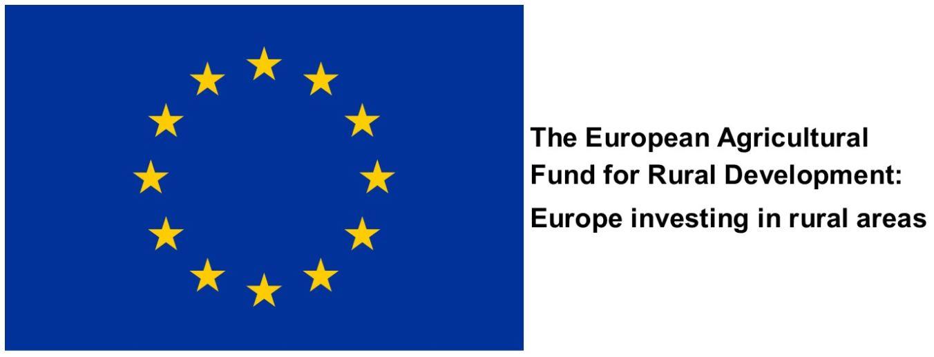 EU Logo w Text