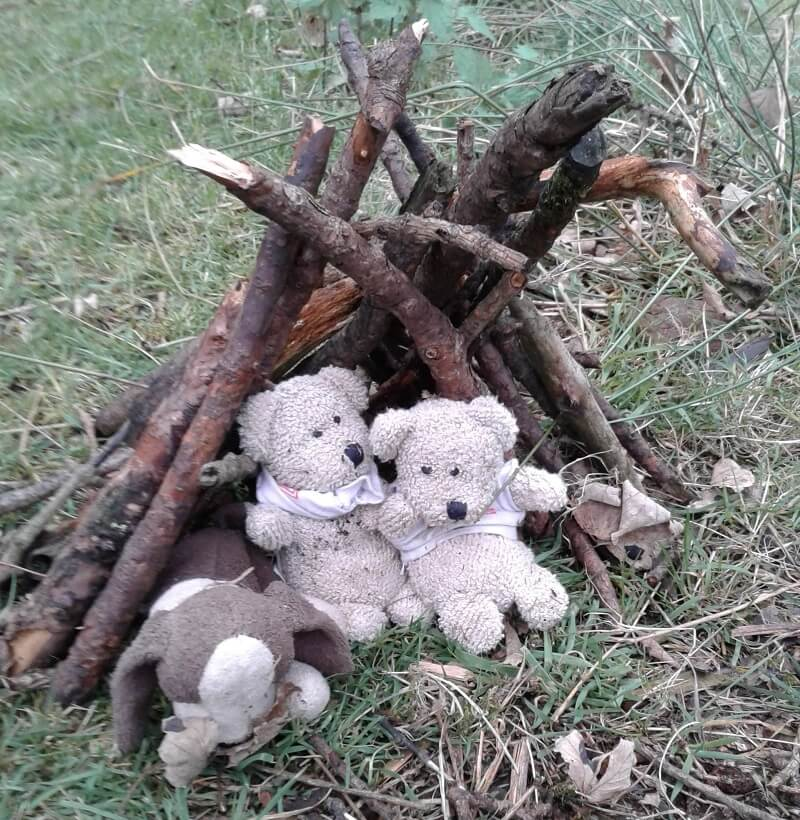 Teddy Bear Hut