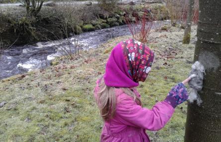 Wildplay Stream at Gradbach
