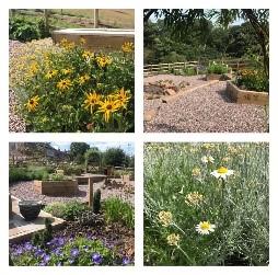 Back Dane Garden